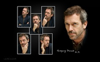 Hugh Laurie / Gregory House
